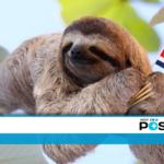 Costa Rica sigue siendo el más feliz de América